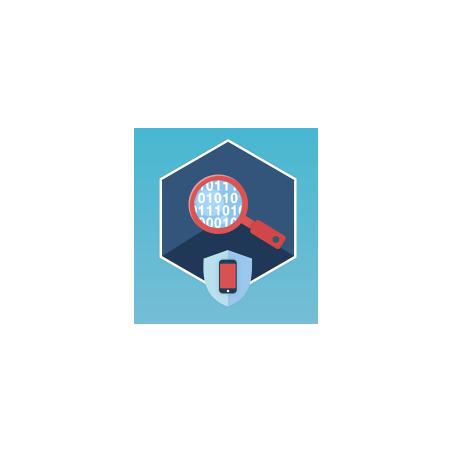 IDA Pro Base Named License (MS Windows)